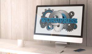 Wordpress Setup & WordPress Installation Service